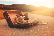 Abandoned, Forsaken Teddy Bear In A Vintage Luggage Suitcase On The Asphalt Road In The Summer Sun Shine In The Nature And Beautiful Light