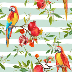 Fototapeta Tropical Flowers, Pomegranates and Parrot Birds Background