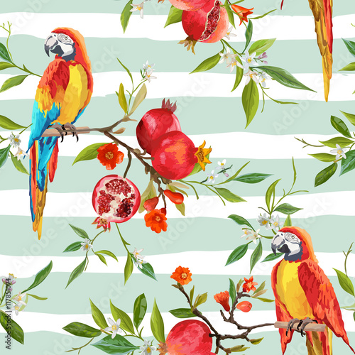 Poster Parrot Tropical Flowers, Pomegranates and Parrot Birds Background