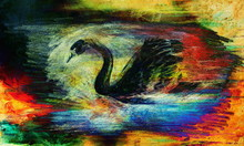 Pencil Drawing Swan On Old Paper Background And Color Abstract Background.
