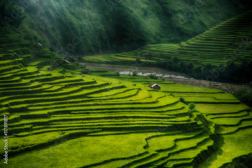 Autocollant pour porte Les champs de riz Rice fields on terraced