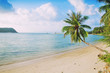 Bright tropical landscape with turquoise sea water and green pal