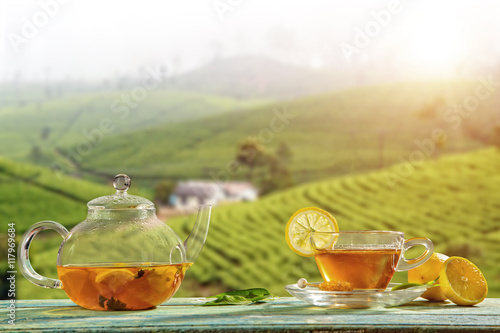Staande foto Thee Cup of hot tea with plantation on background