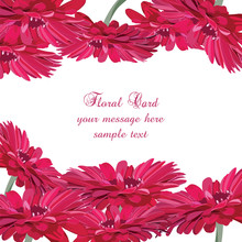 Gerbera Pink Flower Card. Vector Floral Background For Greetings, Wedding, Invitation, Posters