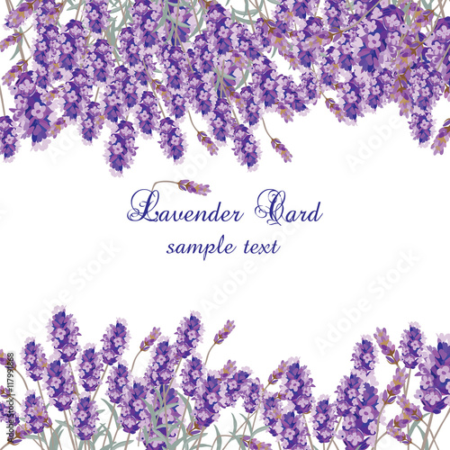 Photo  Lavender Card with flowers in watercolor paint style Vector