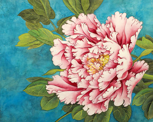 Plakat pink peony on a blue background