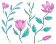 Set of flowers, leaves, twigs, buds. Watercolor illustration on white background.