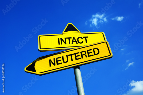Valokuvatapetti Intact vs Neutered - Traffic sign with two options - question of castration, spaying and sterilization of pets