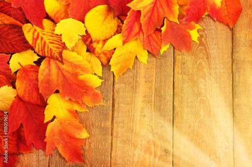 autumn leaves - 118059654