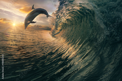 Sunset dolphin jumping over breaking waves. Hawaii Pacific Ocean wildlife scenery. Marine animals in natural habitat.