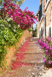 Fototapeta  - Romantic narrow street with blooming bougainvillea flowers on th