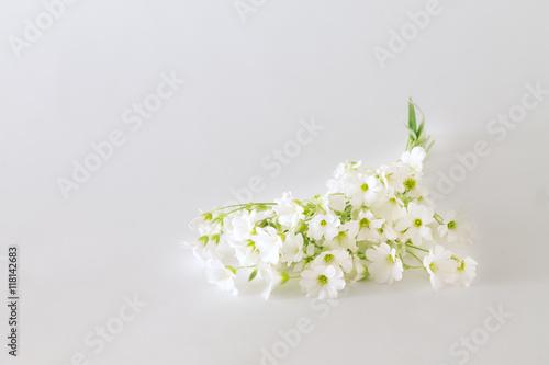 Staande foto Lelietje van dalen bouquet of small white flowers on a light background