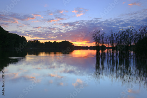 Fotobehang Meer / Vijver Lake with Reeds at Sunset