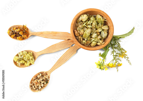 Tuinposter Kruiden 2 Natural flower and herb selection in wooden spoons isolated on white