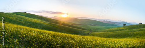 Deurstickers Platteland The green field Tuscany Italy