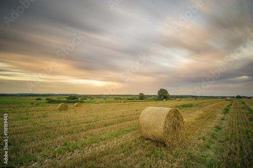 Fotobehang Wit field after the harvest