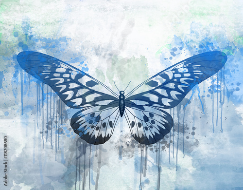Foto op Aluminium Vlinders in Grunge Blue butterfly painted with water colors