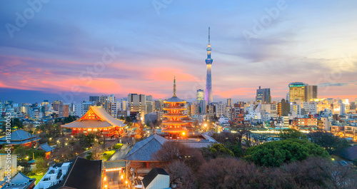 Photo Stands Japan View of Tokyo skyline at twilight