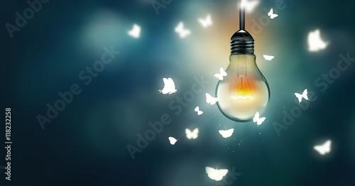 Photo  flying on light
