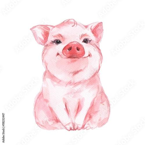 Fotografia, Obraz Funny pig. Cute watercolor illustration 1