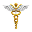 canvas print picture - Caduceus Medical Symbol
