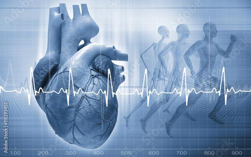 Photo  heart concept
