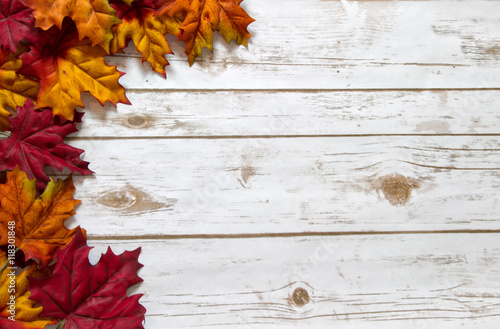 Fotografie, Obraz  Fall and Autumn leaves on a whitewashed wood plank board