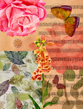 Vintage Collage With Roses, Butterflies, Sheet Music