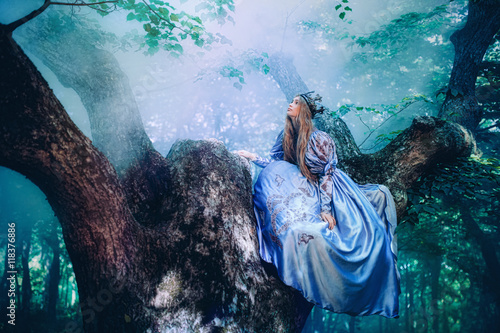 Fotografie, Obraz  Princess in magic forest