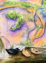 Original Painting Of Ducks On ...
