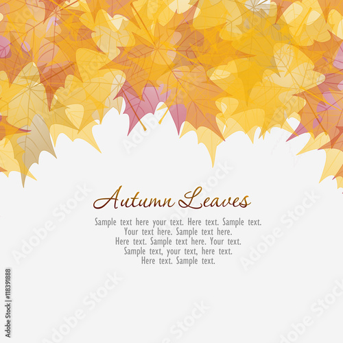 Photo Colorful background from autumn leaves