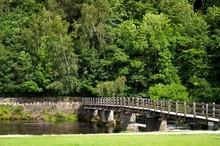 Puente Sobre Río Y Fondo Veg