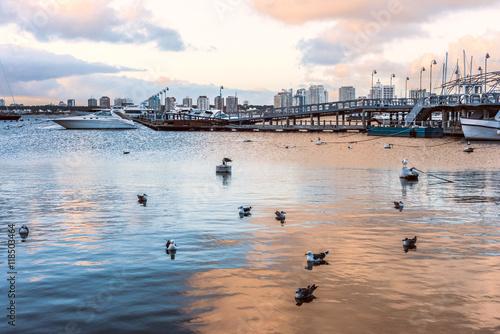 Fotografie, Obraz  Yachts and boats, Punta del Este, Uruguay