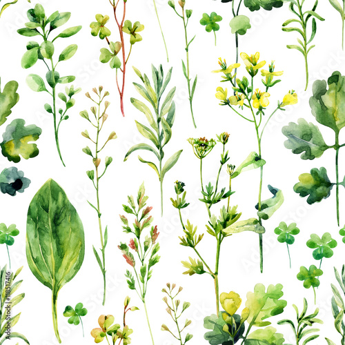 Cotton fabric Watercolor meadow weeds and herbs seamless pattern
