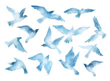 Flying Bird Silhouettes With Watercolor Texture Isolated On White Background
