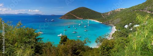 Fotografia, Obraz Tropical shoreline in British Virgin Island (BVI), Caribbean