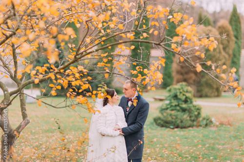 Fototapeta Charming newlywed couple embracing in the beautiful autumn park under tree with yellow leaves obraz na płótnie
