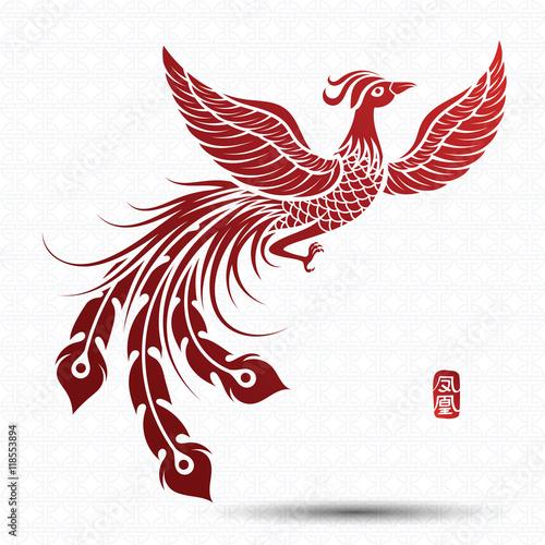 Naklejka premium Chiński feniks wektor