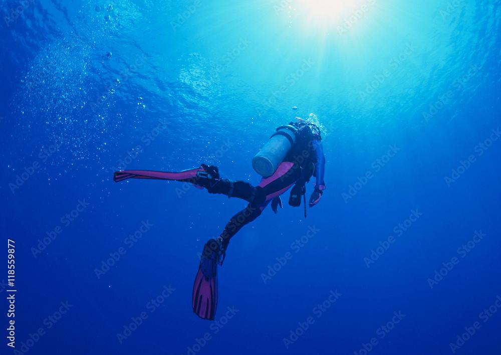 Fototapeta Woman scuba diver under