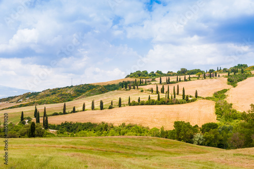 Staande foto Noord Europa winding road flanked with cypresses in crete senesi Tuscany, Ita