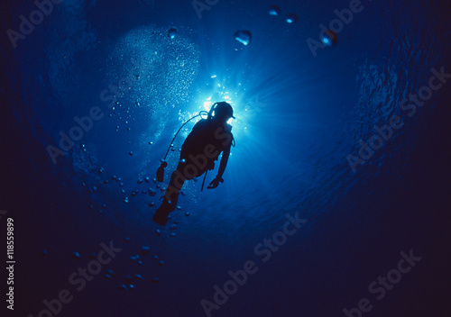Fotografia Woman scuba diver under