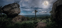 Panorama Of Tree And Boulders Against Nighttime Sky With Cloudy.