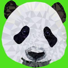 Panel Szklany Panda vector image muzzle panda