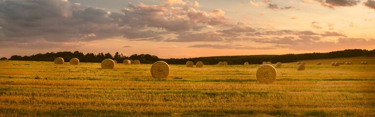 Landschaft im Sommer, abgeerntetes Kornfeld, Panorama