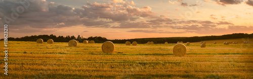 Fotografiet Landschaft im Sommer, abgeerntetes Kornfeld, Panorama
