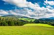 Landschaft in der Steiermark in Österreich