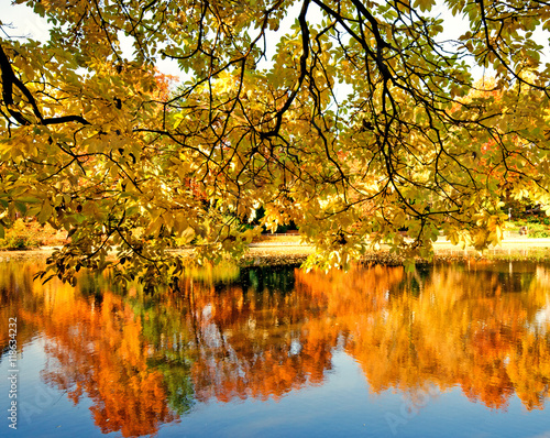 Happiness and relaxation in autumn: Wonderful day at a silent, sunny lake :)