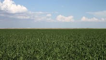 Kansas / Oklahoma - Landscape ...