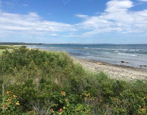 Fotografia, Obraz  Laudholm beach in southern Maine