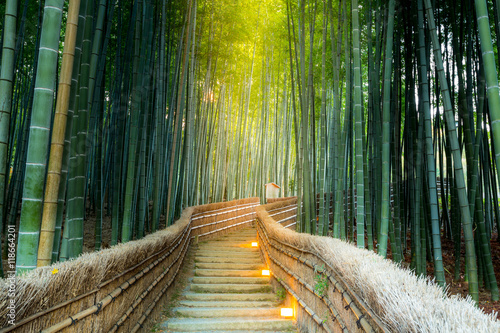Photo sur Toile Bambou Arashiyama Bamboo Forest